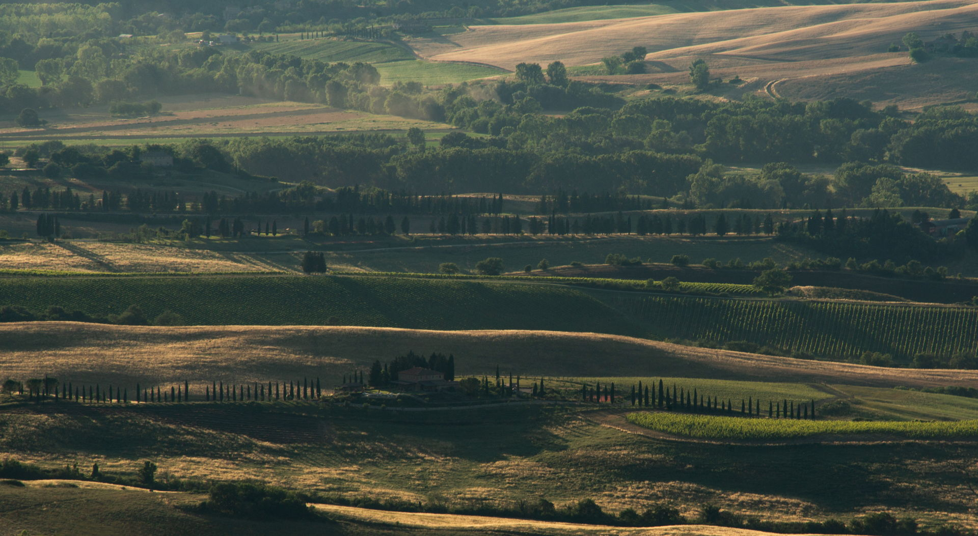 Tasting wine in Tuscany: discovering two wineries