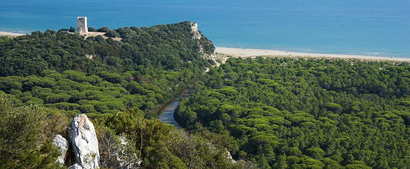 Ad hoc tour: what to see in Maremma