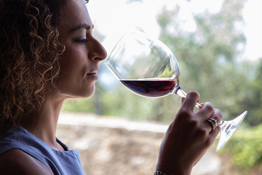 wine-tasting-bindi-sergardi-winery-chianti