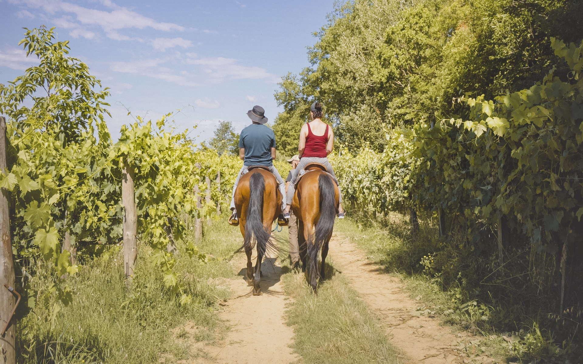 20.-Passeggiata-a-cavallo-con-pic-nic-toscano-1
